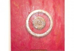 Ring Around the Nautilus